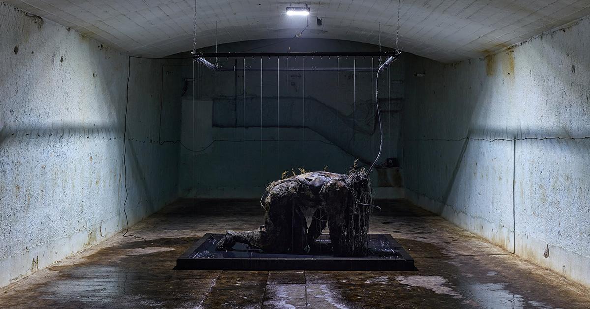 A végítélet képei egy budafoki bányából